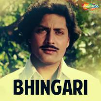 Bhingari