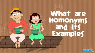 What are Homonyms and Its Examples