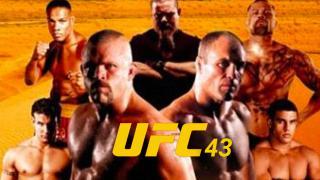UFC 43