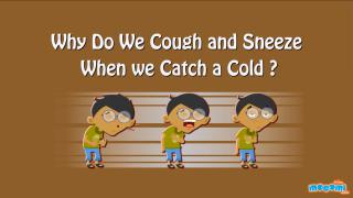 Why do we Sneeze and Cough