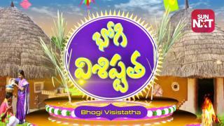 Bhogi Visistatha