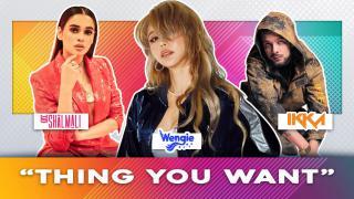 Thing You Want - Shalmali, Wengie ft. Ikka
