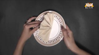 Fan Fold from Napkin