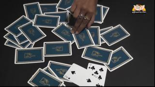 Black or Red Card Trick 1