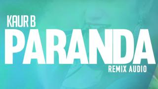 Paranda - Audio Remix