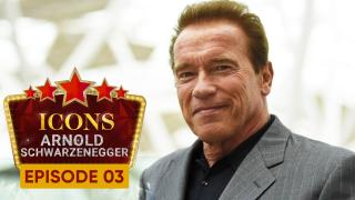 Icons : Arnold Schwarzenegger