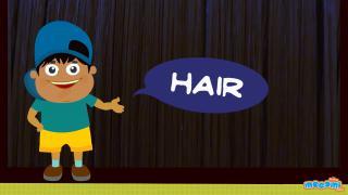 How does Human Hair grow