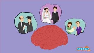 How do we Store and Retrieve Memories