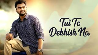 Tui To Dekhish Na