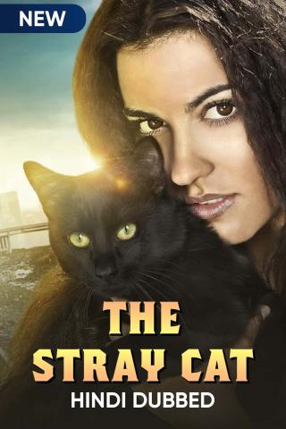 The Stray Cat (Hindi Dubbed)