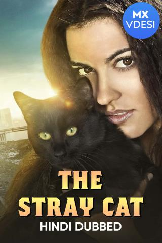 The Stray Cat (Hindi Dubbed)