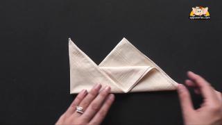 Bishop's Napkin Fold