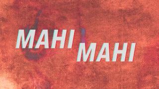 Mahi Mahi - Lyrical