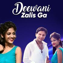 Deewani Zalis Ga