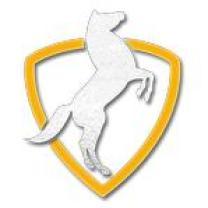 Horses Productions Pvt. Ltd.