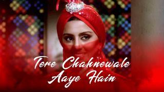 Tere Chahnewale Aaye Hain